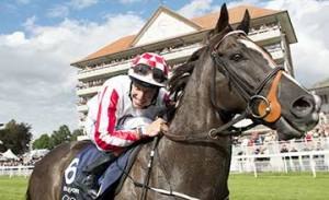 sole power