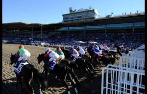 Breeders-Cup-Experiences-Santa-Anita-Grandstand-O-Q-QuintEvents-1