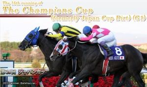 japan cup dirt
