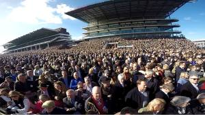 cheltenham crowd