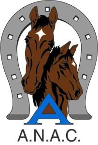 logo Anac