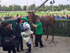 red dubawi di capua 2015