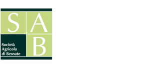 soloSAB-logo-340x156