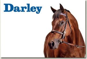 darley dubawi