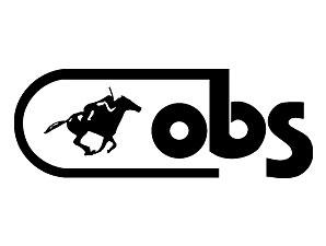 OBS_Logo_298