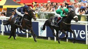 harzand irish derby 2016