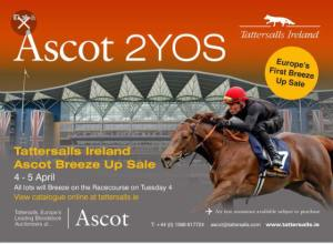 tatts ire ascot breeze