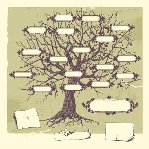 genealog tree