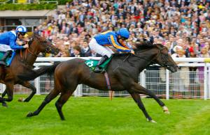 Requinto - Molecomb Stakes