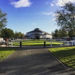tattersalls ireland