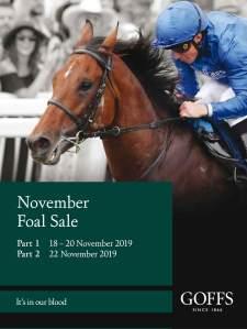 Nov Foal catalogue cover