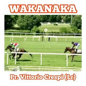 wakanaka crespi2020