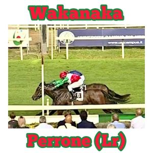 wakanaka perrone 2020